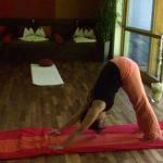 Yoga-Stunden mit Fabiane Daberer